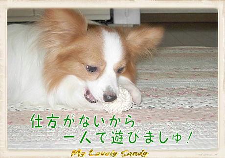 010 ボール遊び U