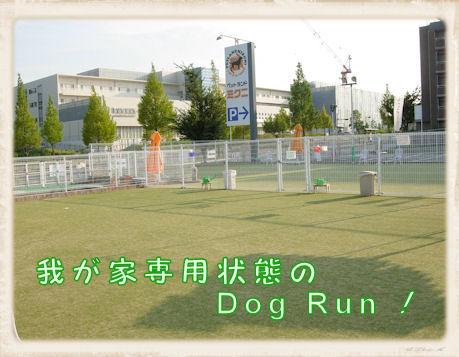 002 Dog Run U