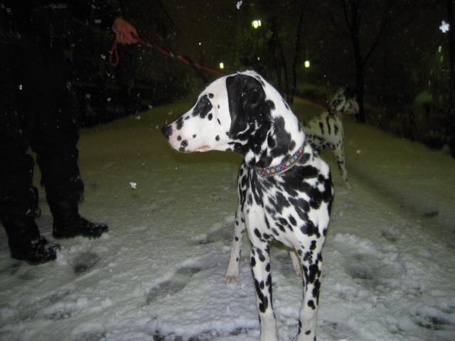雪遊び 009