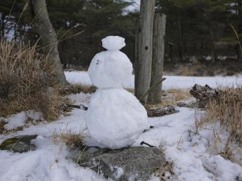 雪のえびの 198