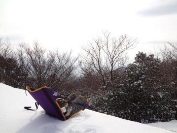 山紫尾 025
