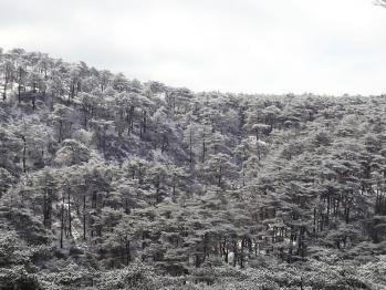 甑岳 129