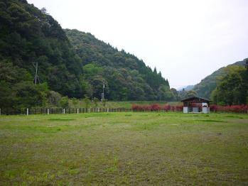 観音池キャンプ 115