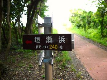 かいもんきゃんぷ 005