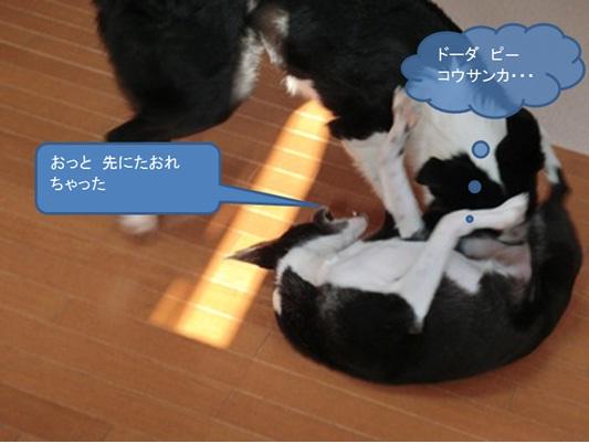 7_20120709222649.jpg