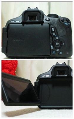 log-20110911-6.jpg