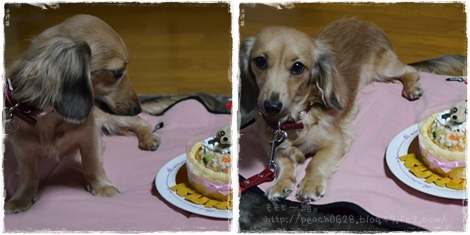 お誕生日ケーキ2-1