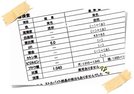 20131225200847のコピー