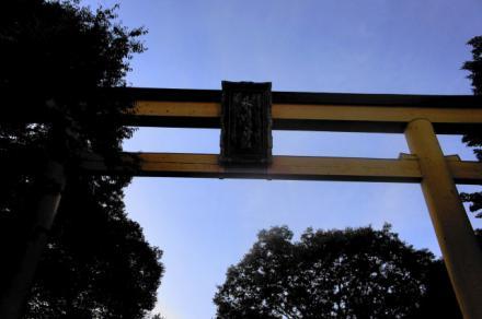 shichigosan.jpg