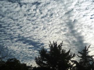 111001 秋の空