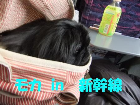 もか新幹線」