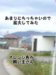 DVC000382.jpg