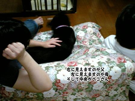 DVC000966.jpg