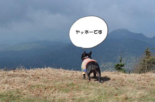 DSC_1449.jpg