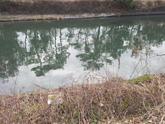 2013年1月23日最初の川