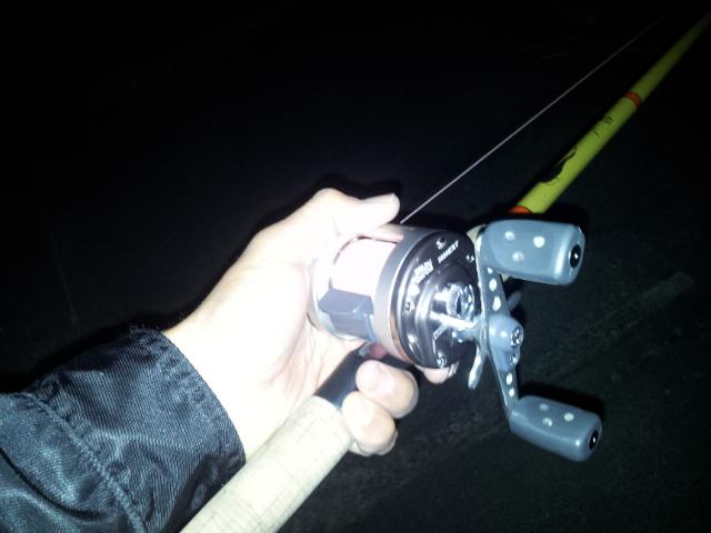 今年の鯰釣りスタート