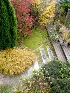 my-garden 084 (2)