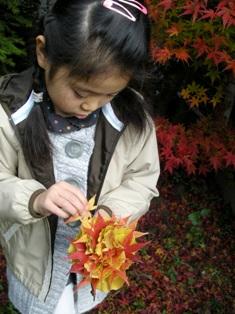 my-garden 082