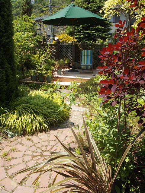my-garden 049 (3)