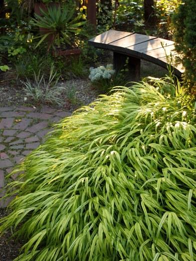 my-garden 001 (4)