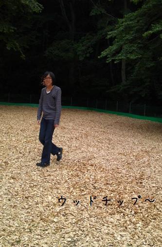 woodtips.jpg
