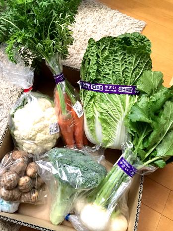 IMG_5442_Fotor野菜