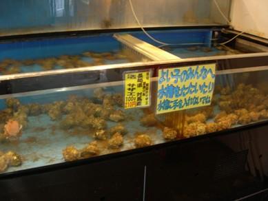 2011.7.2君津5