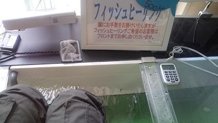 20110521122353.jpg