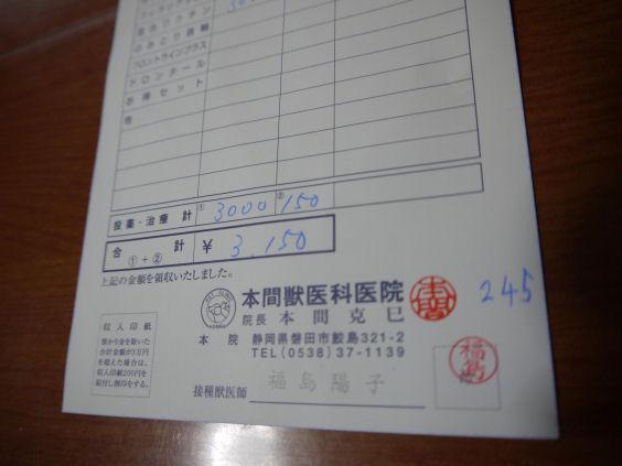 P1160759.jpg