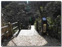 滝見橋-1-