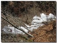 氷の彫刻-1-