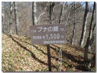 ムシカリ峠-2-