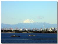 舞浜から富士山-2-