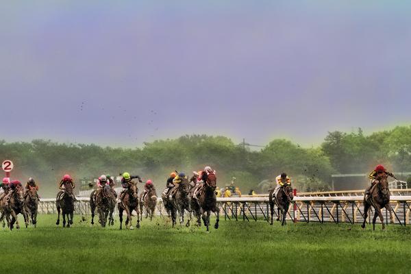 2011 Nippon Derby
