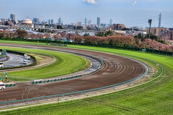 Nakayama Racecourse1