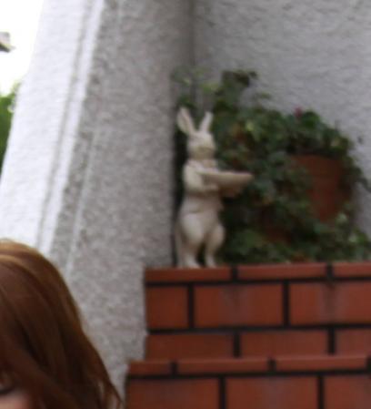 9.12のdesuウサギです