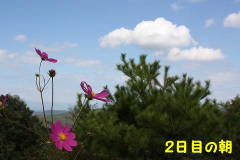 20110925-35.jpg