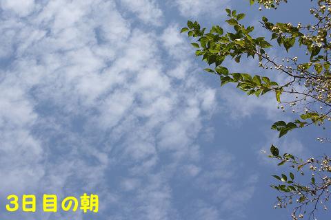 20110926-94.jpg