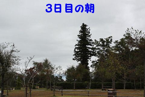 20111024-31.jpg
