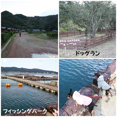 20111120-35.jpg