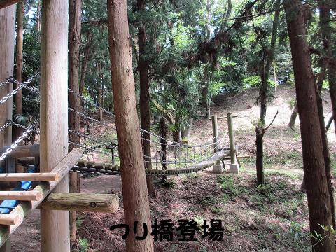 20120429-6.jpg