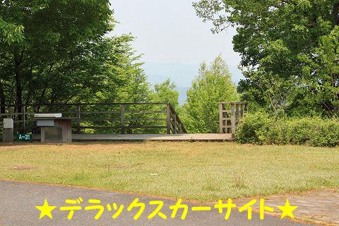 20120510-103.jpg