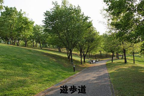 20120510-16.jpg