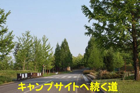 20120510-17.jpg