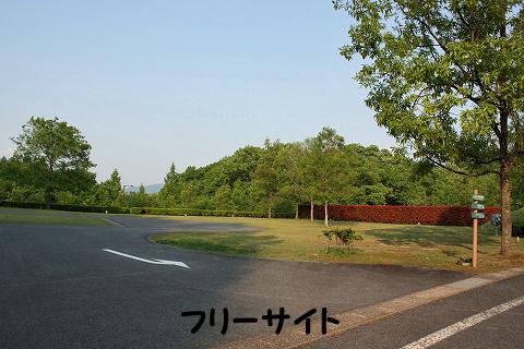 20120510-19.jpg