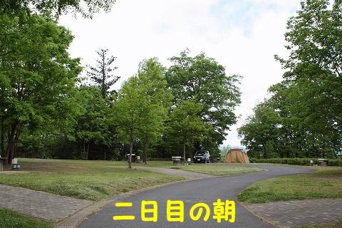 20120511-28.jpg