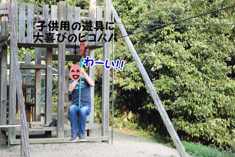 20120921-11.jpg