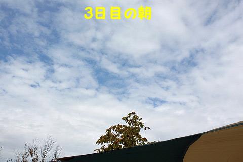 20120923-44.jpg