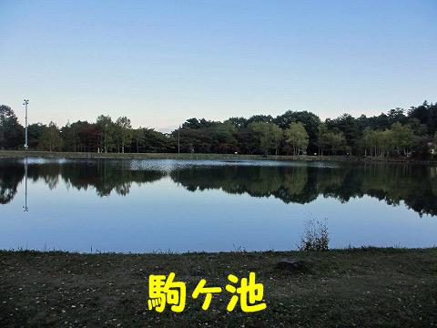 20121015-11.jpg