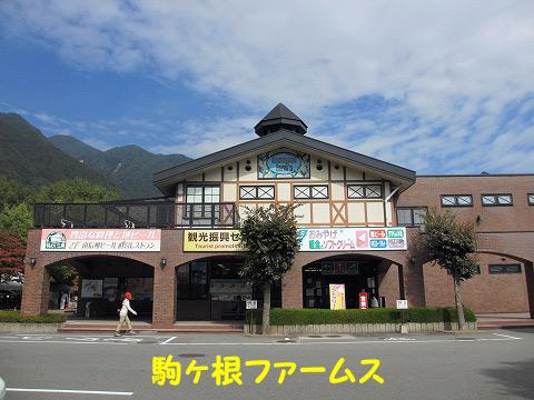 20121017-182.jpg